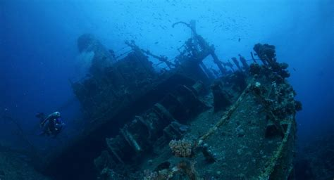 Wine bottles to be salvaged from a British cargo ship sunk
