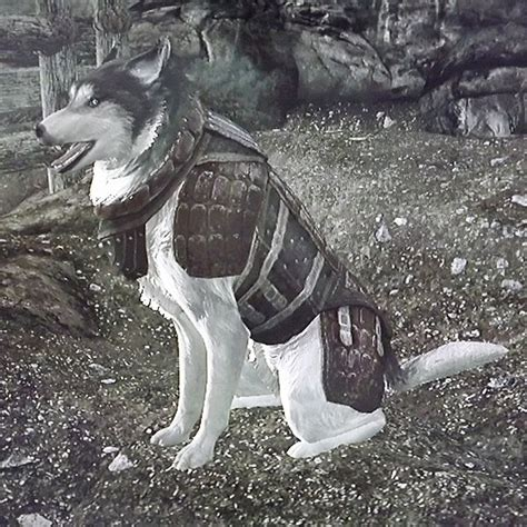 gameguree: Skyrim Dawnguard is out on Steam!
