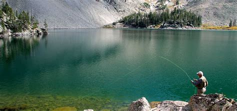 Colorado Fly Fishing United States - New Fly Fisher