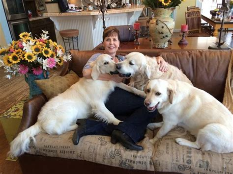Joyce with her three dogs on National Dog Day | I love