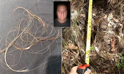 Yowie Man finds mysterious foul-smelling hair on fence