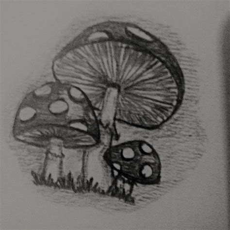 From the side of my SketchBook: Mushrooms | Little doodles