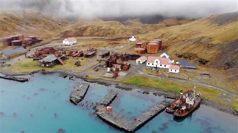 Open Call for South Georgia Whaling Station | Berlin Art Link